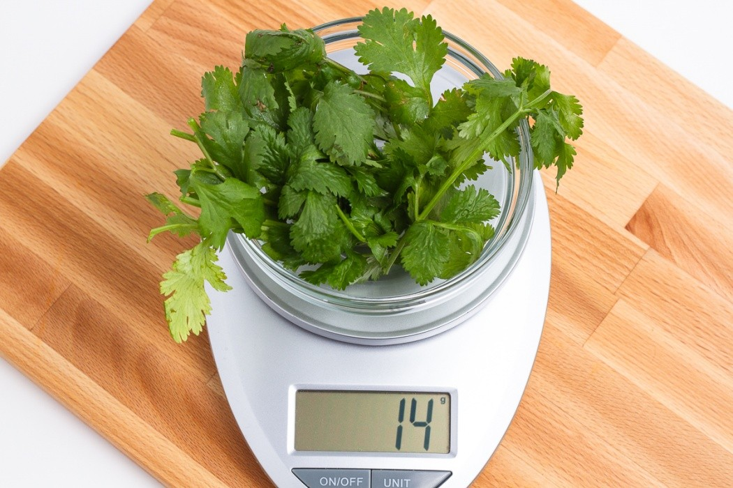 14 grams of cilantro on a scale